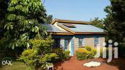 Land 2 Acres Farm With A 3br House All For 5.5m | Land & Plots For Sale for sale in Kirinyaga, Mukure