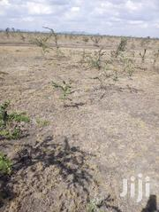 24 Acres of Land for Sale at Kantafu Kangundo Road, With Title Deed. | Land & Plots For Sale for sale in Machakos, Matungulu North