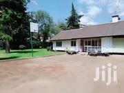 Executive 6br With Guest Wing Own Compound  To Let In Lavington | Commercial Property For Sale for sale in Nairobi, Kilimani