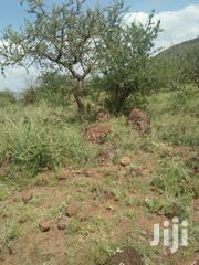 70 Acres Virgin Land For Sale | Land & Plots For Sale for sale in Kajiado, Keekonyokie (Kajiado)