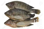 Fish Supplier | Livestock & Poultry for sale in Nakuru, Naivasha East