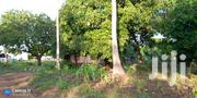 Land On Sale Matuga 1 Acre With House | Land & Plots For Sale for sale in Kwale, Waa