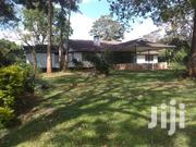 Loresho Spacious 4 Bedrooms Bungalow With DSQ on 0.75 Acre for Sale | Houses & Apartments For Sale for sale in Nairobi, Kitisuru