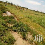 100 Acres for Sale in Ombeyi-Ahero | Land & Plots For Sale for sale in Kisumu, Ahero