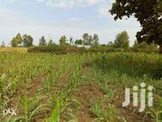 6monthly Instalments Plots For Sale At Kenol In Muranga County. | Land & Plots For Sale for sale in Murang'a, Kariara