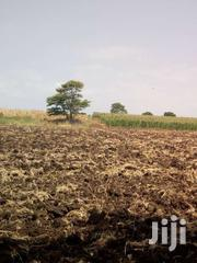 Two Acres of Land in Mwea-Mbeere South Sub County | Land & Plots For Sale for sale in Kirinyaga, Wamumu