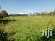 5 Acres for Sale in Ngata, Nakuru | Land & Plots For Sale for sale in Nakuru, Menengai West
