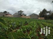 Prime Land on Sale in Ngong | Land & Plots For Sale for sale in Kajiado, Ngong