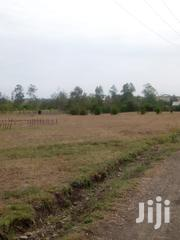 Prime Land for Sale | Land & Plots For Sale for sale in Kajiado, Kaputiei North