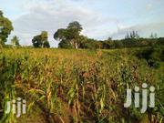 9.5 Acres of Land in Mtwapa for Sale | Land & Plots For Sale for sale in Kilifi, Shimo La Tewa