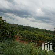 Prime Land for Sale | Land & Plots For Sale for sale in Kiambu, Mang'U