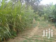 Agricultural Land for Sale in Mutulani Nzaui Makueni | Land & Plots For Sale for sale in Makueni, Wote