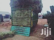 Hay Boma Rhodes | Feeds, Supplements & Seeds for sale in Nakuru, Njoro