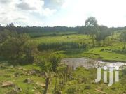 Prime Agricultural Land for Sale, Mumui Subukia Past Catholic Shrine | Land & Plots For Sale for sale in Nakuru, Subukia