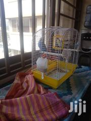Selling Love Birds Cages At Affordable Prices | Pet's Accessories for sale in Nairobi, Nairobi Central