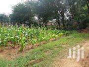 Kilifi Green Estate Plot 50 By 100 On Sale | Land & Plots for Rent for sale in Kilifi, Sokoni