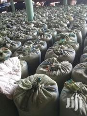 Maize For Sell | Feeds, Supplements & Seeds for sale in Kajiado, Rombo