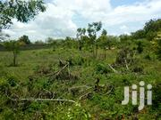 Half Acre 2nd Row Beach Plot in Tiwi South Coast Just Before Diani | Land & Plots For Sale for sale in Kwale, Tiwi