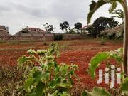 Runda Panafric - 0.6 Acre Plot | Land & Plots For Sale for sale in Nairobi, Karura