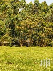 Ready Title | Land & Plots For Sale for sale in Bomet, Merigi