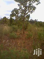 Plot for Sale | Land & Plots For Sale for sale in Meru, Igoji East