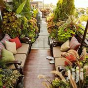Crazy Landscapers | Home Accessories for sale in Nairobi, Ngando