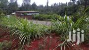 Selling 3.8 Acres Of Land In Nyeri Nairutia | Land & Plots For Sale for sale in Nyeri, Mweiga