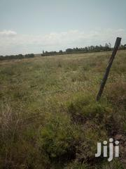 5 Acres Land In Nanyuki | Land & Plots For Sale for sale in Laikipia, Nanyuki
