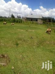 Plot On Sale At Mtonyora | Land & Plots For Sale for sale in Nyandarua, Magumu