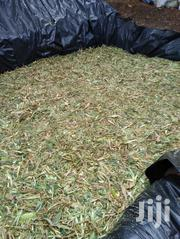 Ready Silage -yellow Maize Silage | Feeds, Supplements & Seeds for sale in Nakuru, Njoro