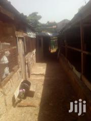 Chicken Houses For Lease | Farm Machinery & Equipment for sale in Nairobi, Ruai