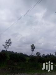 Mitahato Quarter Acre Torching Road at 2m Only | Land & Plots For Sale for sale in Kiambu, Ngewa