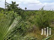 12 Acres Beautiful Land In Mlungunipa Clean Title | Land & Plots For Sale for sale in Kwale, Ukunda