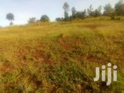 40x80ft Residencial Plots For Sale At Kenol Makeu(Red Soil) | Land & Plots For Sale for sale in Murang'a, Kimorori/Wempa