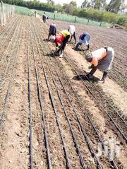 Drip Irrigation Laying | Garden for sale in Nairobi, Imara Daima