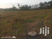 Very Prime Kamakis 50*100 Commercial Plot for Sale | Land & Plots For Sale for sale in Nairobi, Roysambu