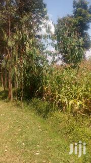 1 Acre Parcel of Land in Rodi Kopany | Land & Plots For Sale for sale in Homa Bay, Homa Bay East
