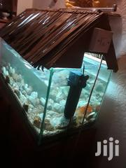 Fish Aquarium 14×14×31 Inches | Fish for sale in Nairobi, Mountain View