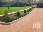Carnation Landscapers And Maintenance | Landscaping & Gardening Services for sale in Kiambu, Ndenderu