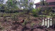 Prime Landacre Located In Garden Estate Off Thika Road For Sale, Title   Land & Plots For Sale for sale in Nairobi, Roysambu