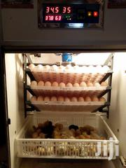 Incubator Can Hatch All Types Of Fertilized Eggs | Farm Machinery & Equipment for sale in Nairobi, Nairobi Central