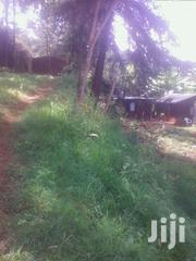 3½ Acres Ihururu Nyeri | Land & Plots For Sale for sale in Nyeri, Ruring'U