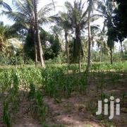 Land on Sale at Mtwapa Bomani | Land & Plots For Sale for sale in Mombasa, Majengo