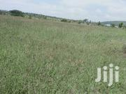Land for Sale | Land & Plots For Sale for sale in Nyeri, Iria-Ini