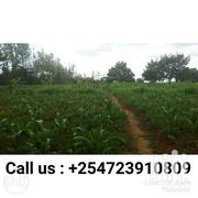 1 Acre In Mwireri, Nanyuki At 900k | Land & Plots For Sale for sale in Laikipia, Nanyuki