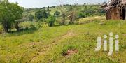 66 Acres in Kwale Around Shimba Hills Area 400k Per Acre . | Land & Plots For Sale for sale in Kwale, Ramisi