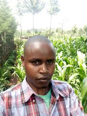 Messenger, Cleaners | Office CVs for sale in Baringo, Ravine
