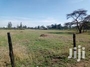 5 Acres for Sale in Sobea, Nakuru | Land & Plots For Sale for sale in Nakuru, Menengai West