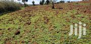 Land for Sale | Land & Plots For Sale for sale in Nakuru, Molo