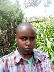 Bce Drivers Turnboys/Loaders | Manual Labour CVs for sale in Baringo, Ravine